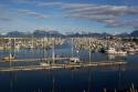 Port_Of_Homer.jpg