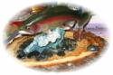 6059trout_image2.jpg